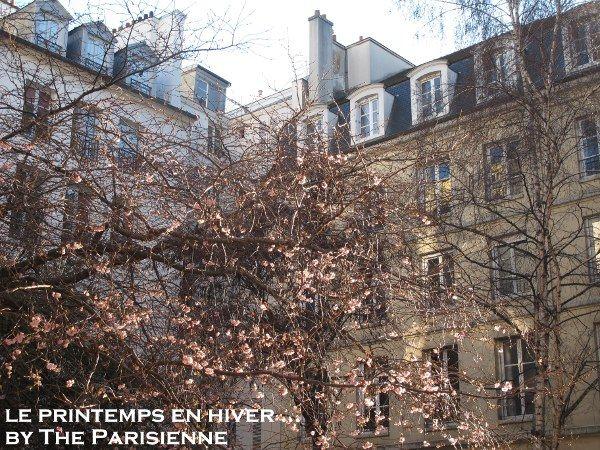 lumi re d 39 hiver ou les bienfaits du soleil the parisienne. Black Bedroom Furniture Sets. Home Design Ideas